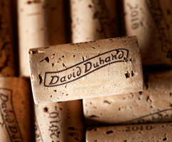 tasting-evening-master-class-of-the-burgundy-estate-david-duband