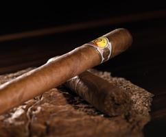 tasting-evening-for-the-bolivar-brand