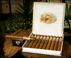 tasting-evening-for-two-new-cuban-cigars
