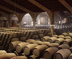 tasting-evening-of-the-wines-from-the-bodega-valdespino-1-jpg